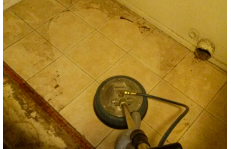 cleaning a water damaged place before professionals arrive