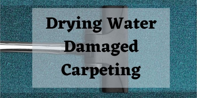 vacuum drying water damaged carpet