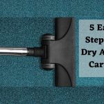 5 easy steps to dry wet carpet