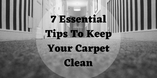 7 Essential Tips To Keep Your Carpet Clean